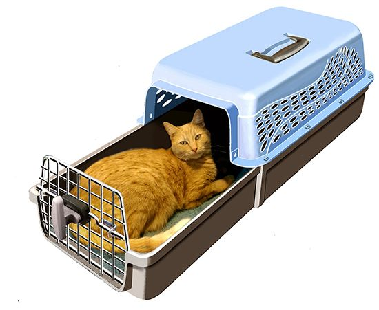 Check out this innovative Cat Carrier! This design offers a totally new way to get cats in and out of a carrier that's much less stressful for both you and your cat! This new carrier has a unique slide-out drawer that allows you to place your cat inside and simply slide the drawer closed - no more shoving kitty through a small opening and fumbling with the door latch! Read more about it here: