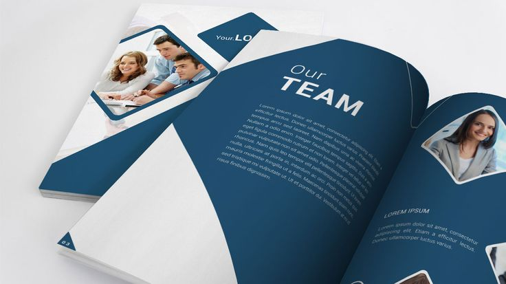 Company Profile that have quality design and has a high attraction, built using a common content for a company or service.