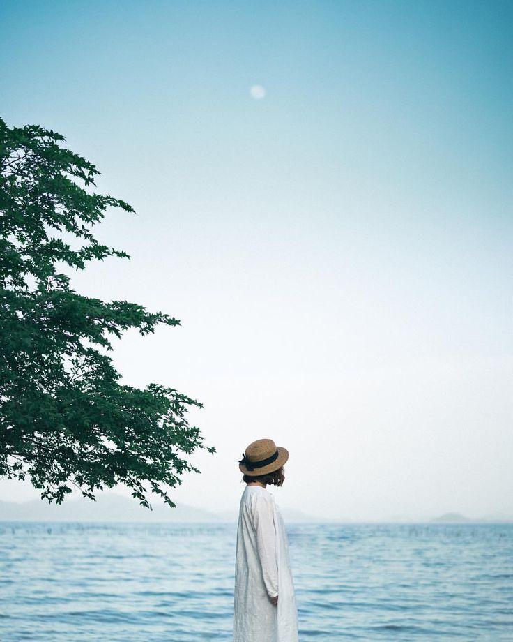 いいね!183件、コメント7件 ― akiさん(@kanna_1020)のInstagramアカウント: 「* . . . Trembling in the breeze . . . . . #colors_of_day #hueart_life #pics_jp #cools_japan…」