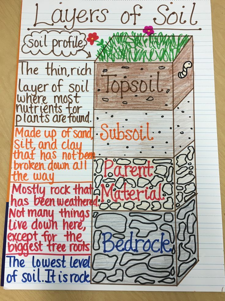 Layers of Soil Anchor Chart
