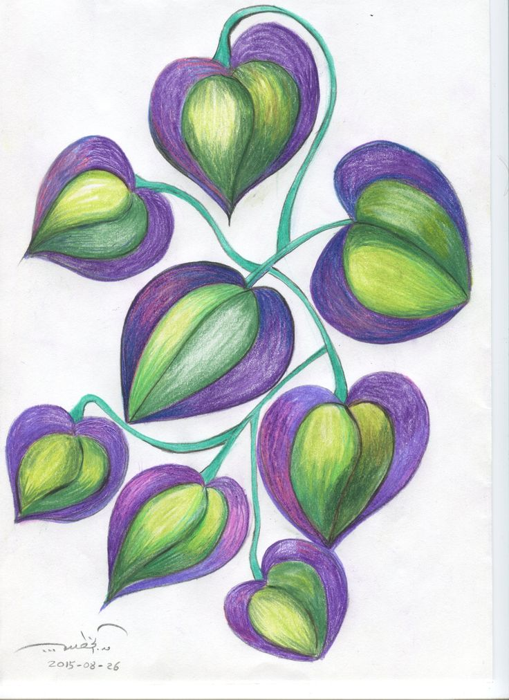 A plant. Color pencils. qusay.alkhateeb.se