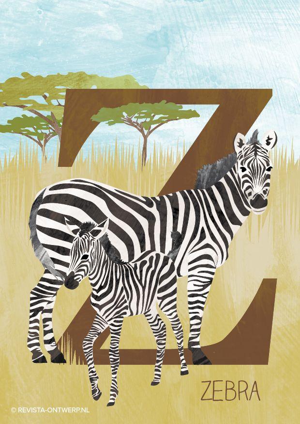 De Z van zebra! Elk strepenpatroon is uniek en het zijn zwarte dieren, met witte strepen, niet andersom. Elke week een illustratie uit het alfabet voor kinderen: revista-ontwerp.nl
