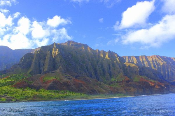 THE MFA BLOG: Hawaii should be calling MFA applicants