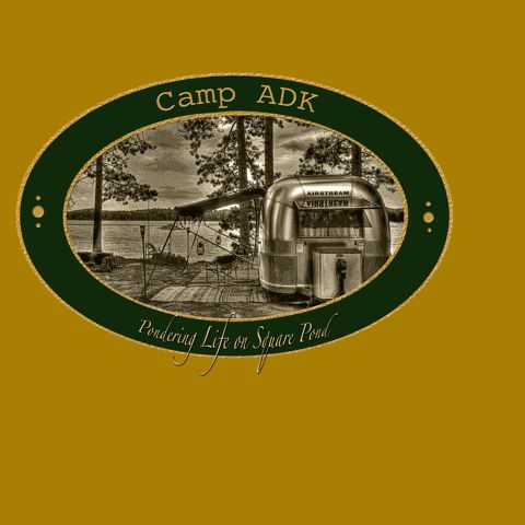 New York State Campsite Photo Database - check out the campsites before you reserve them!