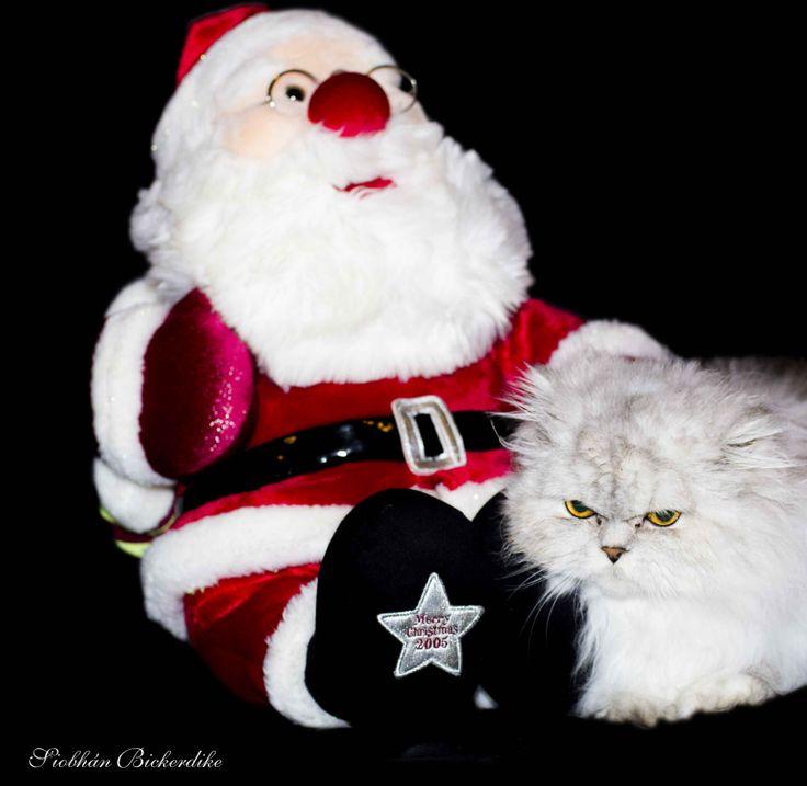 Dear Santa, Define Good