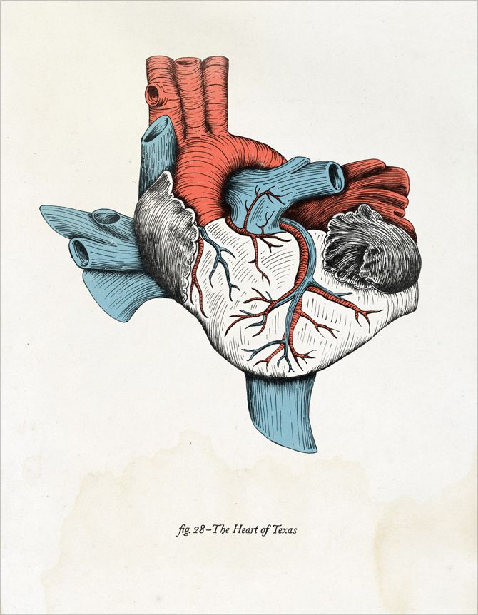 The Heart of TexasbyTim Delger. Prints available here.