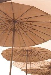 Umbrellas on Thai beach: Random Pictures, Beautiful Random, Beach Umbies, Warm Brown, Healthy Food