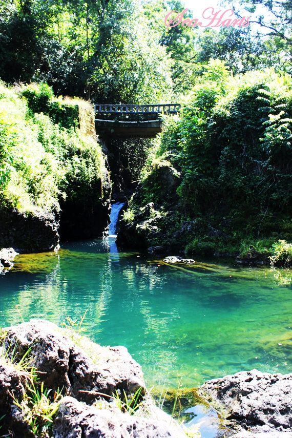 Ching's Pond, Hana, Maui, Hawaii