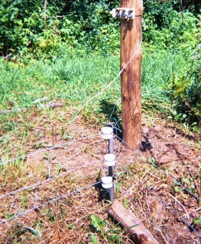 In general, the racoon fence (being low to the ground) is harder to maintain than other electric fences because you need to keep the low strand from ...