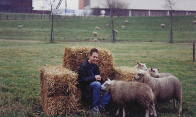 Men vs Sheep - Luie stoel van hooi. Terwijl de schapen je stoel opeten, geniet jij van het uitzicht en de schapen om je heen. De balen hooi worden zo geconstrueerd dat er een fauteuil ontstaat. De anders zo wilde schapen worden (door het voedsel waar jij op zit) ineens tam.