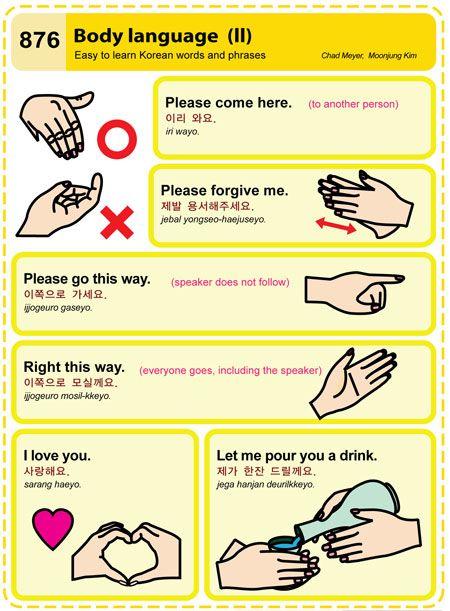 Learn french flashcards body