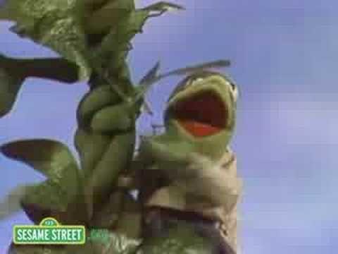 Sesame Street: Kermit Reports News On Jack & The Beanstalk