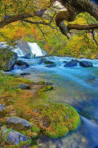 Waterfall in the Forest, Santa Cruz, Argentina