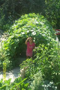a garden tunnel for kids to climb through i thought it would be a great - Vegetable Garden Ideas For Kids