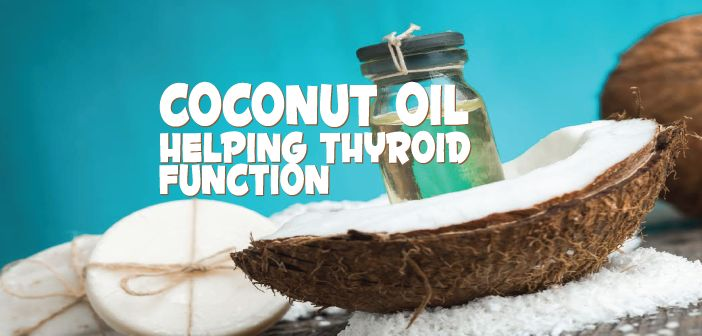 Coconut oil can really help with thyroid-related problems, such as hair loss and dry skin. Read more to find out how and why it's so great... Did you know coconut oil can help Hypothyroid problems? Ƹ̵̡Ӝ̵̨̄Ʒ  Learn how it can support weight, inflammation and hair issues ▼  http://thyroidnation.com/coconut-oil-help-thyroid-problems/  #Hypothyroid #CoconutOil
