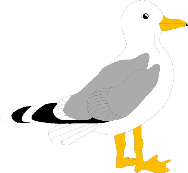 seagull craft template - Google Search