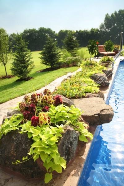 27 best Swimming Pools images on Pinterest | Swimming pool decks ...