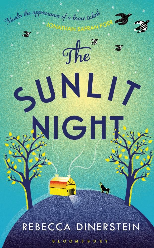 Culture Street | The Sunlit Night by Rebecca Dinerstein