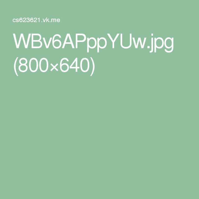 WBv6APppYUw.jpg (800×640)
