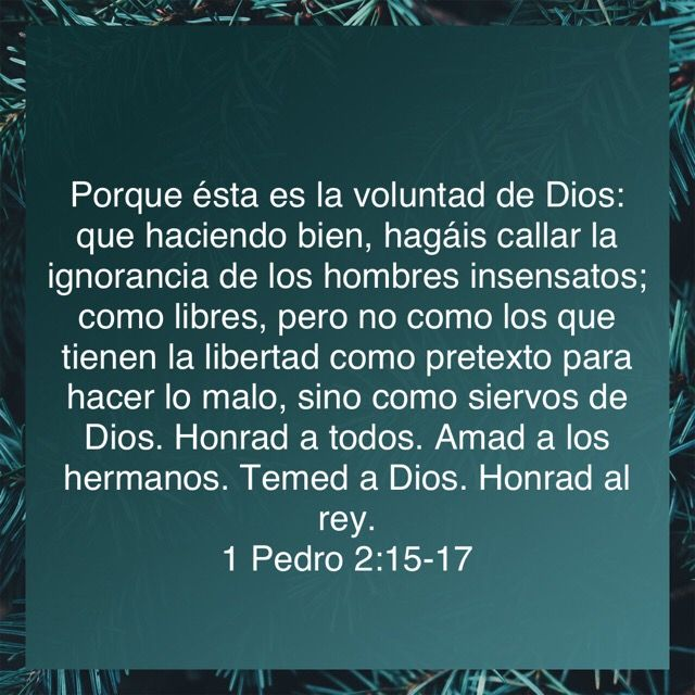Pin By Bolivar Ivann Tamayo Rodriguez On Dios Bible