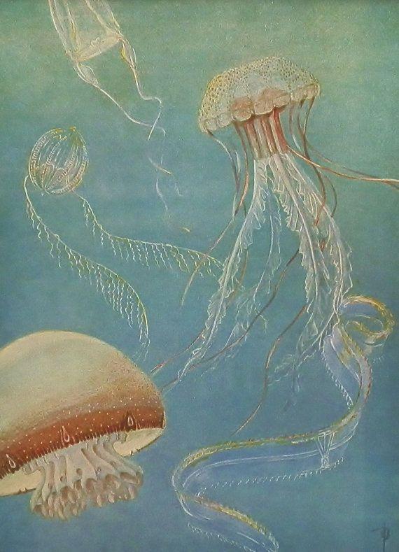 Vintage Medusa Jellyfish Beach Cottage Decor 1930s