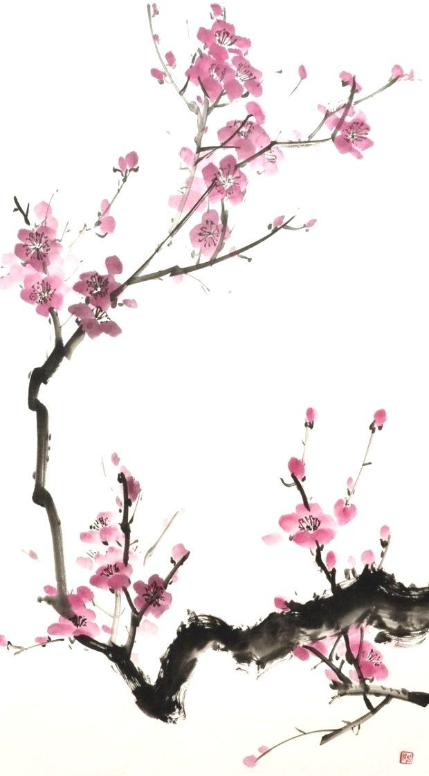 View L Image View L Image D Origin Cherry Blossoms Pinterest Images With And Flower Of Cherry Blossom Art Blossoms Art Flower Art