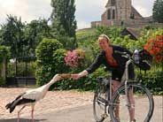 merlot reiser, (sykkeltur med bagasjetransport)