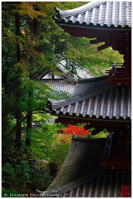 Ganzen-ji (岩船寺) Kyoto, Japan by Damien Douxchamps