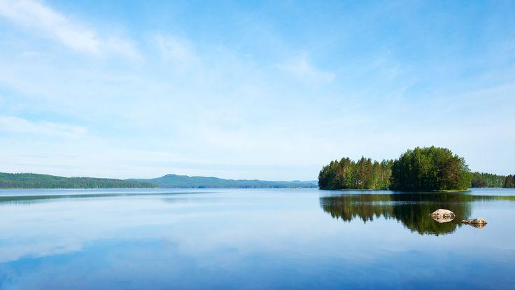 Canon: Pohjoismainen kysely valokuvaukseen liittyen. Luontokuvaus on ylivoimaisesti suomalaisten suosikki.