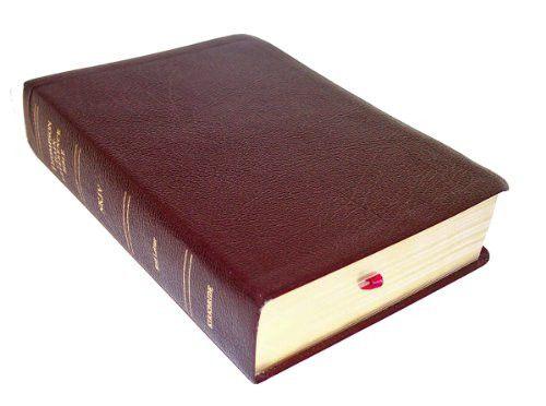 pdf bible nkjv  for psp