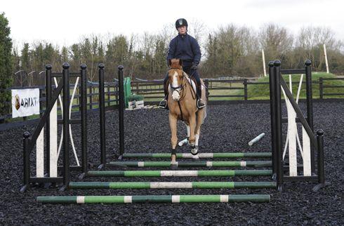 Tina Fletcher: teaching a horse to jump  Horse & Hound
