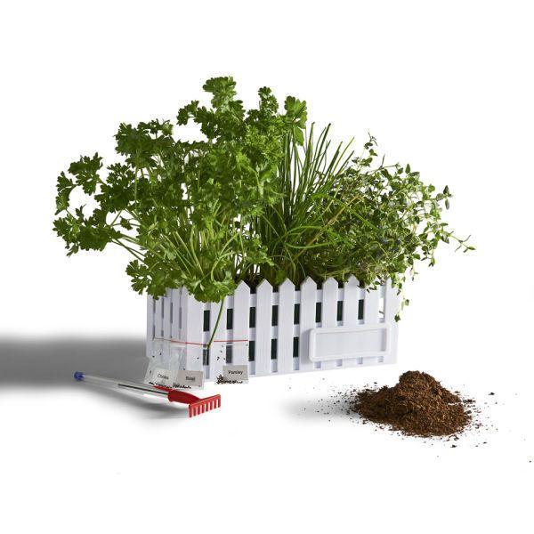 mini gardens gifts for desk projects forward mini jardín de ...