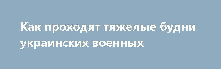 Как проходят тяжелые будни украинских военных http://rusdozor.ru/2017/07/08/kak-proxodyat-tyazhelye-budni-ukrainskix-voennyx/  «Подвиги» украинских военных, совершённые в состоянии подпития, уже давно никого не удивляют. Тем не менее напоминать, сколь бравая и грозная армия защищает обычных людей, всё же стоит. Так, один интересный инцидент произошёл в Закарпатской области в Виноградовском районе между сёлами ...