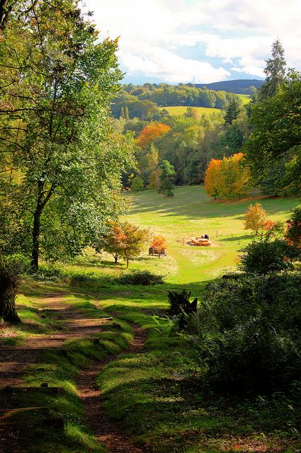 Winkworth Arboretum, located in Surrey, England, exhibits large collections of azalea, rhododendron, and holly on slopes leading down to ornamental lakes. Gertrude Jekyll explored the woods in the early 20th century. The exotic trees were planted from 1938 by Wilfrid Fox.