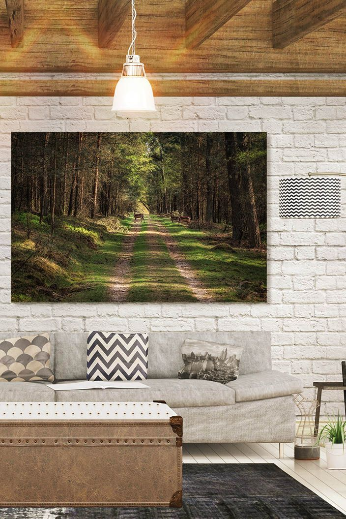 Deer in the Forest by Tim Abeln Photography and Digital Art Prints. Beautiful wall decoration for your home and office. These deer crossed the path through the forest and stopped for a moment to pose for the camera. #animals #nature #forest #photography #wallart #interiordesign #homedecor #decoration #inspiration #artforsale