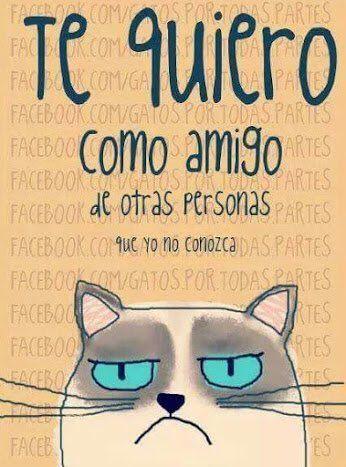 El Hematocrítico (@hematocritico) | Twitter