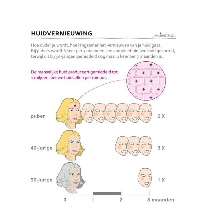 Infographic over exfoliëren. Voor vrouwen van veertig plus, vijftig plus of zestig plus. 40+, 50+, 60+.