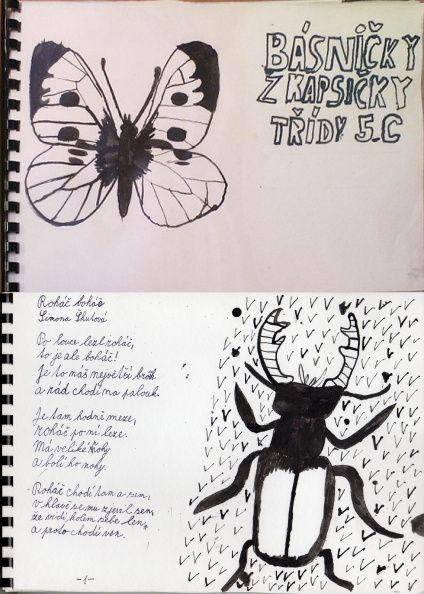 Básničky o hmyzu