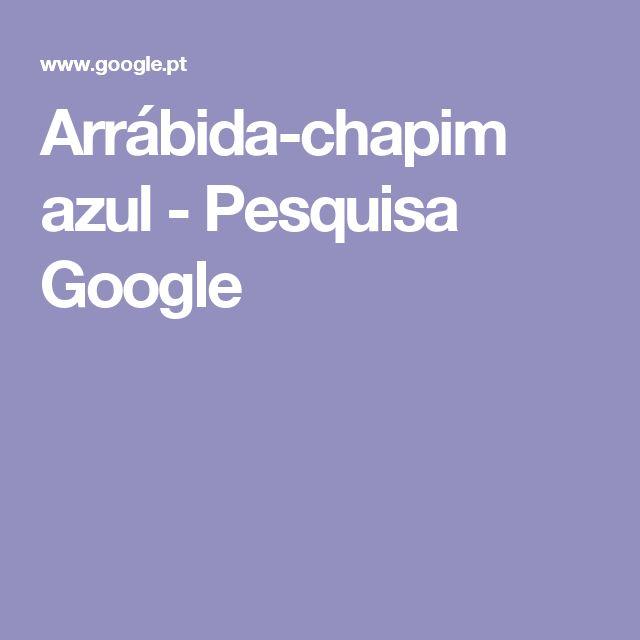 Arrábida-chapim azul - Pesquisa Google