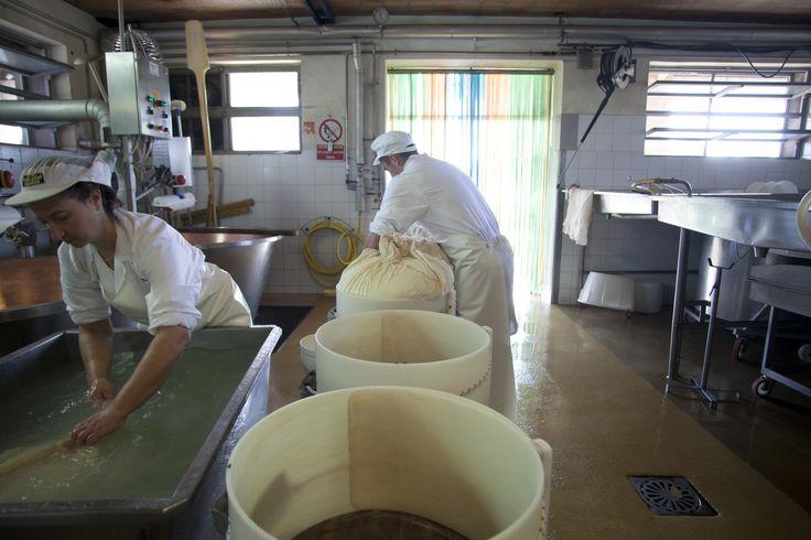 Il nostro Parmigiano: ancora fatto a mano con tecniche artigianali