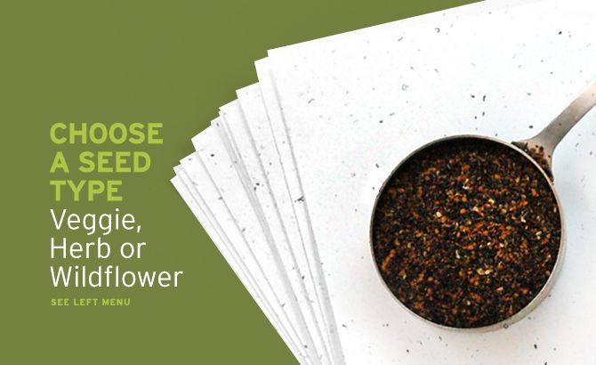 Plantable Seed Paper Seed Type