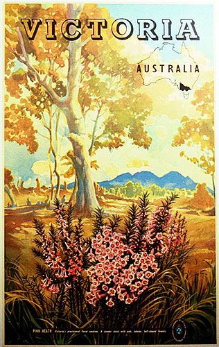 "by Vernon Jones Victoria, Australia. Pink Heath, 1950s. Colour process lithograph, Linen backed. Text continues:   ""Victoria's proclaimed floral emblem. A slender shrub with pink, tubular, bell-shaped flowers. Government of Victoria Tourist Develop-ment Authority."""