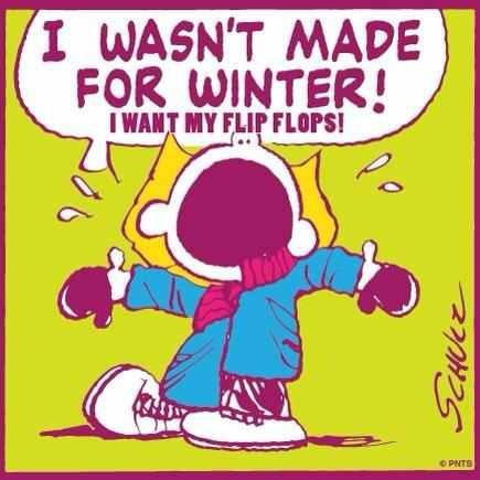 I wasn't made for winter! I want my flip flops!: Sally Brown, My Life, So True, Funny Quotes, Flip Flops, Flip Flop, Totally Me, True Stories, Cold Weather