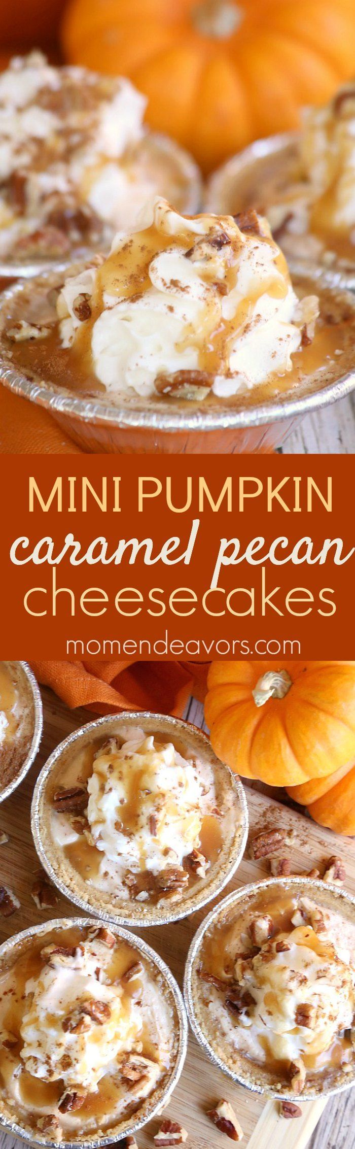 Mini Pumpkin Caramel Pecan No-Bake Cheesecakes! This tasty no-bake pumpkin pie recipe is perfect for fall and an easy Thanksgiving dessert!