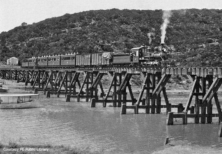 Part 4: Loerie - Assegaaibos © - Soul of A Railway