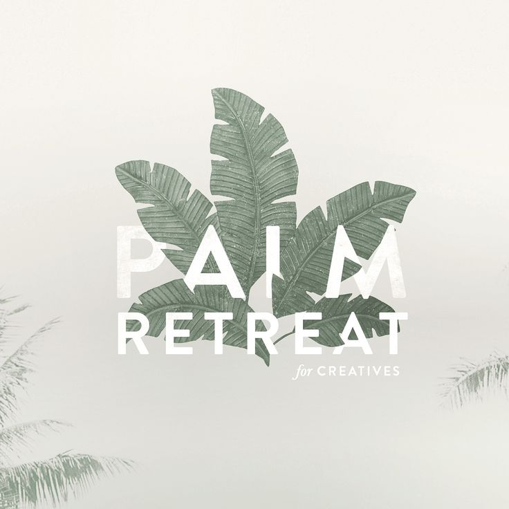 Mel Volkman St Augustine Graphic Design Web Design Palm Leaves Logo Tropical