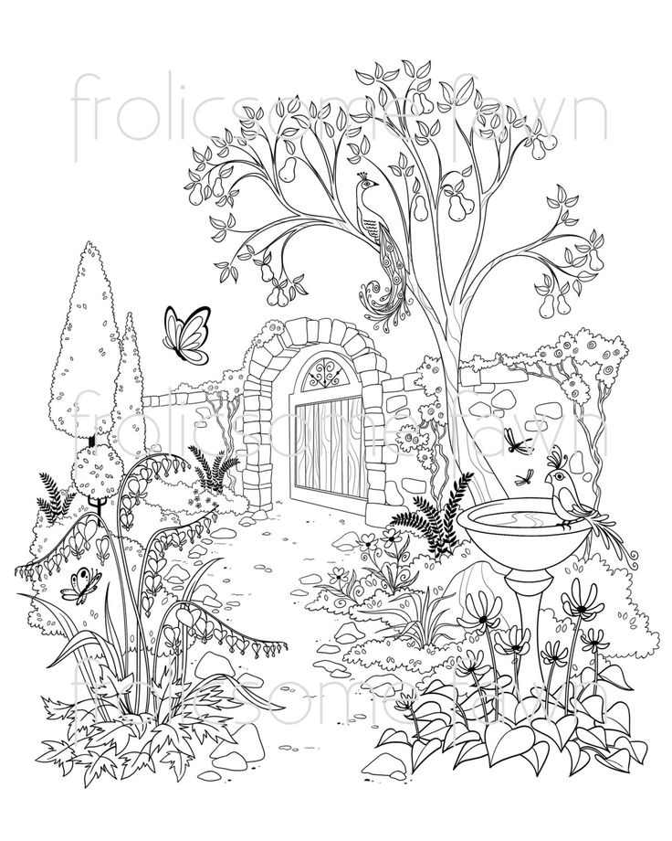 Garden Coloring Page for Adults and Children Fantasy Garden
