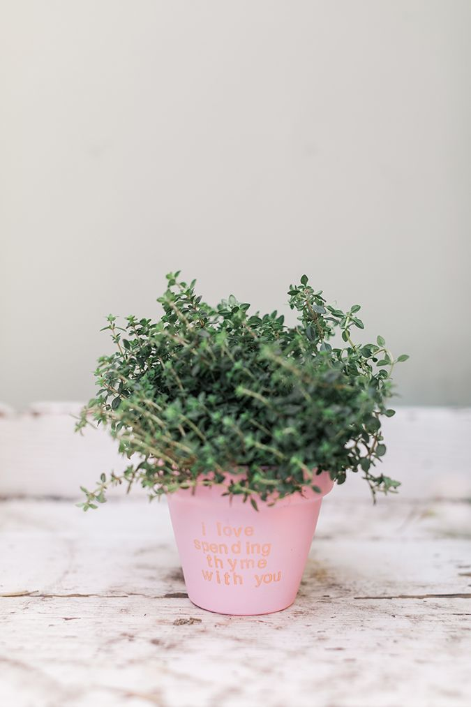 """""""I love spending thyme with you"""""""