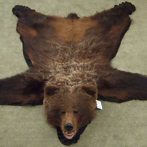 bear rug! I WANT THIS SO BAD! BUT I want to hunt my own :D