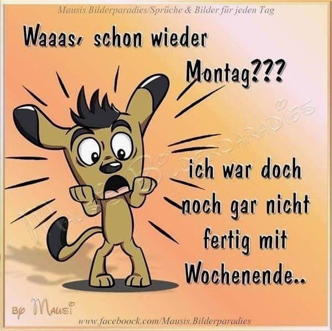Montag Bilder Fur Whatsapp Gb Bilder Gb Pics Gastebuchbilder Schoner Montag Bilder Fur Whatsapp Spruche Leben Lustig